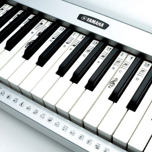 Piano Keys Labeled - City Line Sound Best Digital Piano Reviews